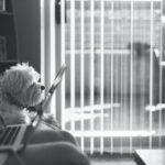 Bought a dog in lockdown? New research reveals that 45% of home workers favour a policy that allows dogs in the office
